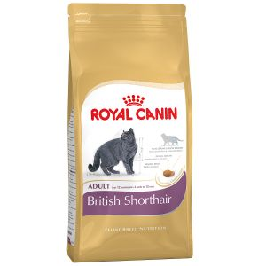 Royal Canin Feline Breed Nutrition British Shorthair 34 Adult - Sac 400 g