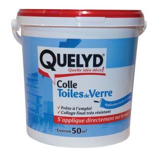 Quelyd Colle Toiles de verre 10Kg - 30601713