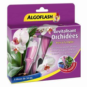 Algoflash Monodose Revitalisante Orchidées 30 mL