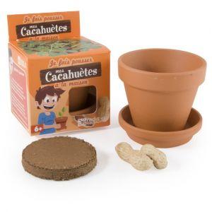 Radis et capucine Graines de Cacahuètes en pot de culture pour enfants