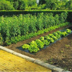 Intermas Gardening INTERMAS - Film de paillage 1.4 x 10 TERRAFILM