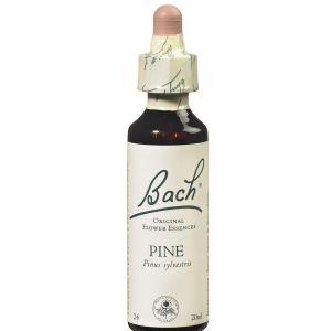Fleurs de Bach N°24 Pine - 20 ml