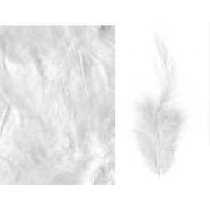 Artémio Plumes blanches de tailles différentes