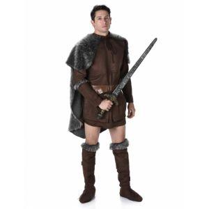 Déguisement prince viking homme