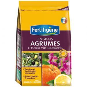Fertiligene Engrais agrumes bg boîte 800 g