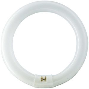 Philips Tube fluo rond G10q 32W 865 Master Circular TL-E