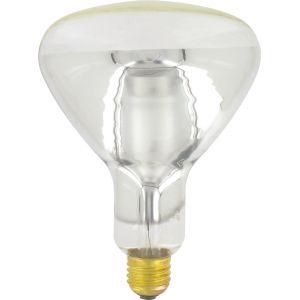 General Electric Ampoule réflecteur infrarouge E27 - Claire - Puissance restituée 250 W