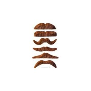12 moustaches chatain
