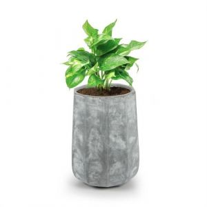 Blumfeldt Decaflor Bac à fleurs 40 x 50 x 40 cm fibre de verre - gris clair