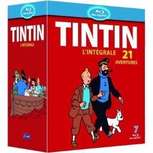Coffret Tintin - 21 DVD
