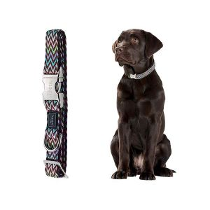 Hunter Collier pour chien Krazy Zigzag avec fermoir en aluminium L/25