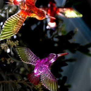 Guirlande solaire colibri - STAR