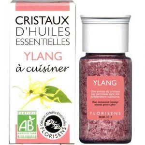 Aromandise Cristaux d'Huiles Essentielles Bio Ylang 20g