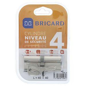 Cylindre de serrure 40+40 mm, 10 goupilles, BRICARD modèle Trial s