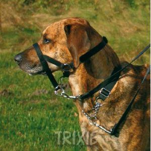 Trixie Harnais de dressage noir Top Trainer Taille L-XL Longueur 37 cm