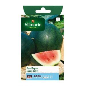 Vilmorin Pastèque sugar baby - Sachet graines