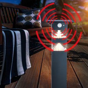Esotec Solaire LED Capteur Borne Lumineuse Tortona - Couleur de la Lumière 3000K Blanc Chaud - Max. 600 Lm Lichtstrom - D'Autonomie 8 Hauteur - Dimensions 14 X 55 CM - Lampe Lampadaire Détecteur Mouvement