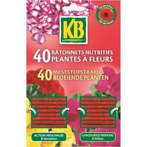 KB 40 bâtonnets nutritifs pour plantes à fleurs