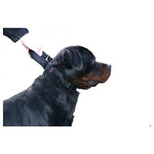 Martin Sellier Collier pour chien 70-90 cm