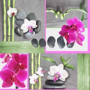 Orchidée - Toile cirée au mètre