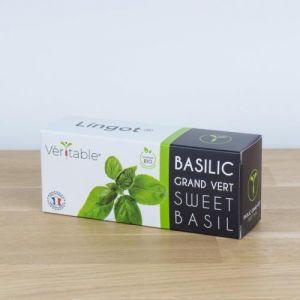 Veritable Capteur pour plantes LINGOT BASILIC
