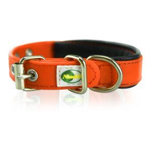 Supersteed Collier pour chien ajustable avec boucle - 375-455 mm, orange