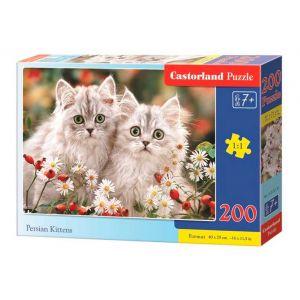 Castorland Persian Kittens