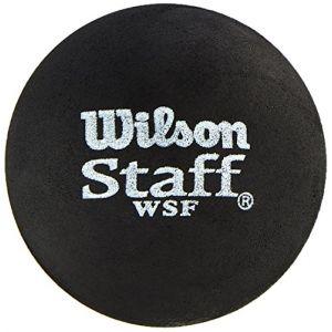 Wilson Balle de squash Intérieur, Débutants, 2 Balles, Staff Squash, Point rouge, Noir, WRT617700 lot de 2