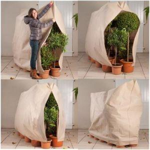 ProBache Housse d'hivernage pour plante et arbuste 120 x 180 cm