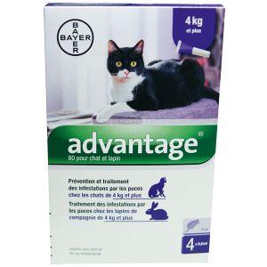 Bayer Advantage 80 : 6 pipettes pour chat de plus de 4 kg - Traitement contre les puces
