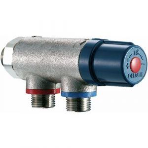 Delabie Régulateur thermostatique d eau chaude sanitaire PREMIX Compact - M 1/2 pour 2 à 7 robinets -