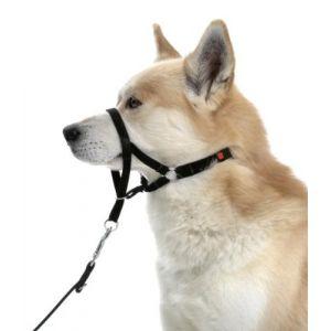 Karlie Master de chien harnais pour formation taille 1