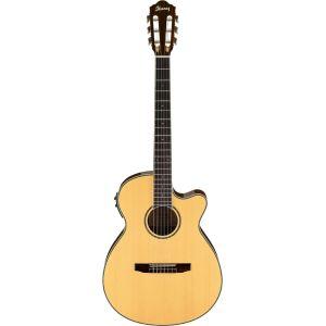 Ibanez AEG10NII - Guitare électro acoustique