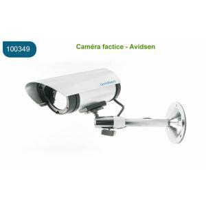 Avidsen 100349 - Caméra de surveillance factice