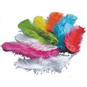 PW International Plumes de dinde multicolores (250g)