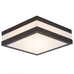 Lightbox Plafonnier/applique murale extérieure sobre 2 lampes E27 Max. 11 W En acier inoxydable/plastique Anthracite
