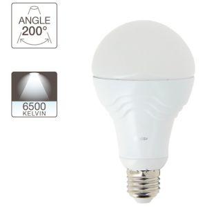 Xanlite Ampoule LED A60, culot E27, 14,2W cons. (100W eq.), lumière blanc froid