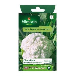 Vilmorin Chou-fleur Merveille de toutes saisons - Sachet graines