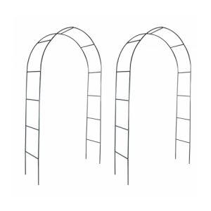 VidaXL 40776 - Arche de jardin pour des plantes grimpantes (2 pièces)