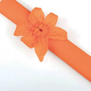 Rouleau papier crépon 10m Orange
