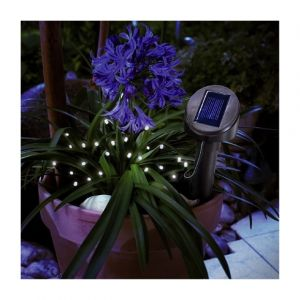 Ideanature Guirlande solaire FESTOON - 24 Leds - Blanc Idea Nature
