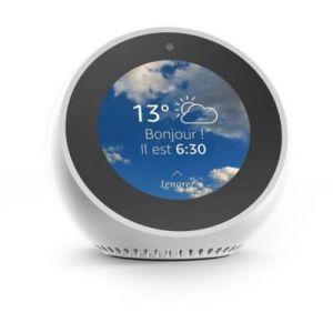 Amazon Echo Spot - Smart Home Hub