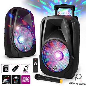My deejay Enceinte mobile Sono DJ PA Karaoké 600W
