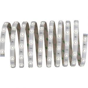 Paulmann Ruban LED avec connecteur mâle YourLED 70593 12 V 300 cm blanc neutre 1 pc(s)