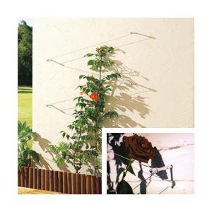 Intermas Gardening 170210 - Treillis Palissa avec câble en acier 10 m