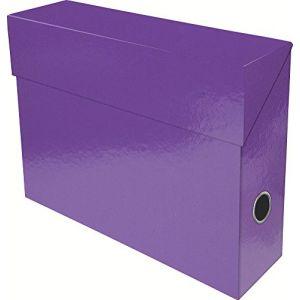 Exacompta 89926E - Boîte transfert IDERAMA en carte 22/10e, dos de 90, coloris violet