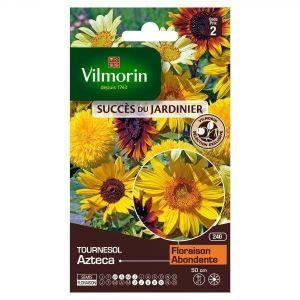 Vilmorin Soleil Tournesol Azteca - Sachet de graines
