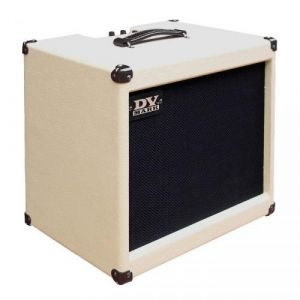 DV Mark DV Jazz 12 combo guitare
