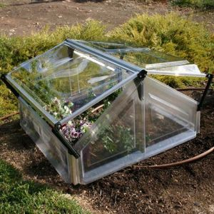 Palram Gaya - Serre châssis de jardin en polycarbonate 1.10m²