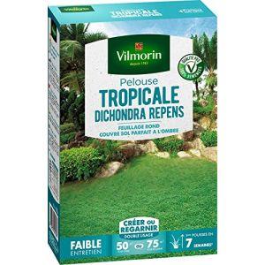 Vilmorin Gazon Dichondra Repens 500 gr